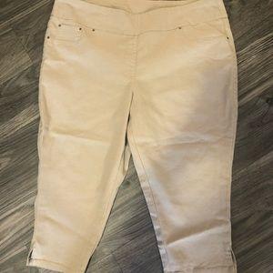 Women's Size 20W Ruby Rd Capri Pants